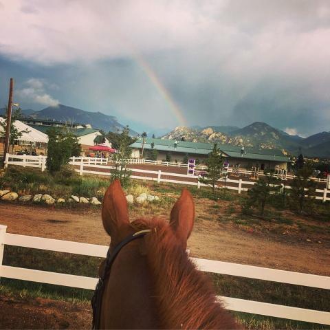 Rainbow Through the Horse's Ears